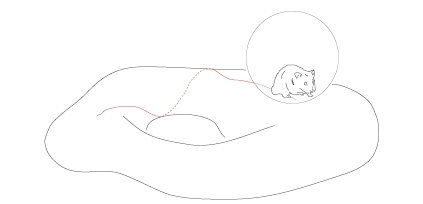 Teleparallel Gravity | RM.